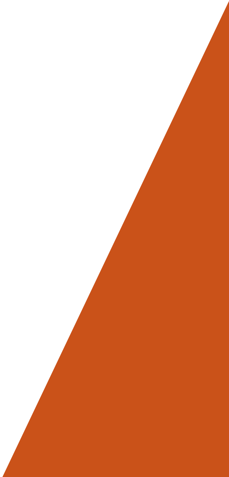 Triangle orange